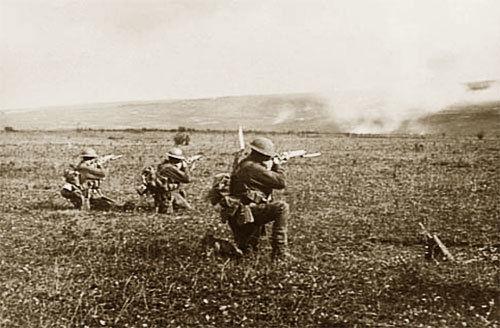 Тайна Кельтского леса: куда исчезли бойцы «Грозного» батальона